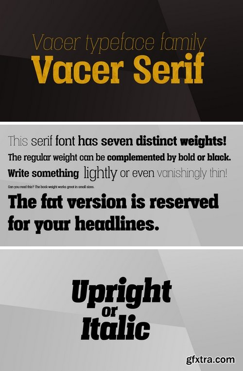 Vacer Serif Font Family - 14 Fonts