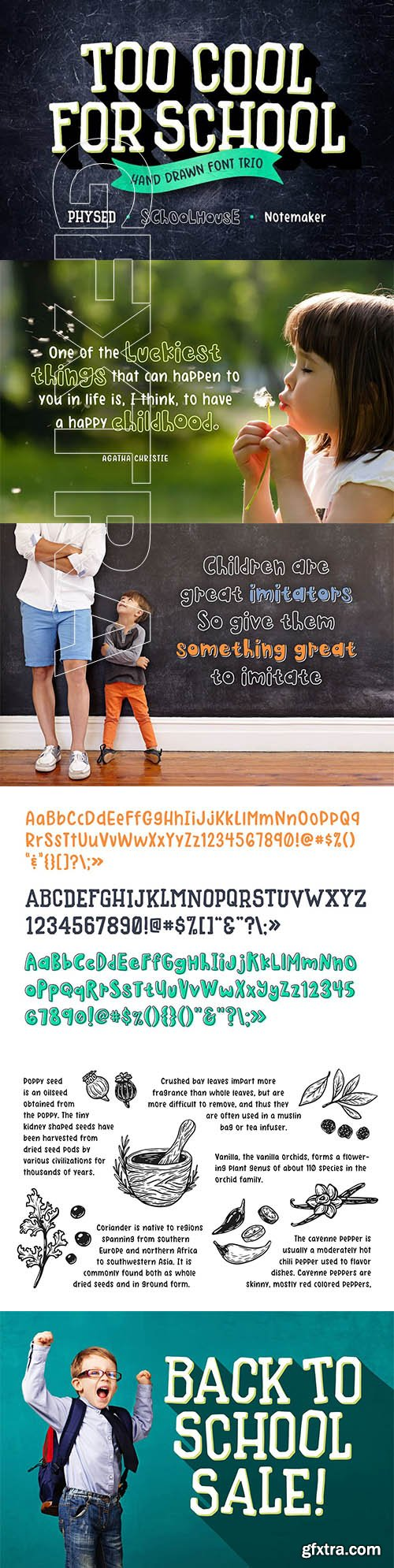 CreativeMarket - Too Cool for School Font Trio 2836843