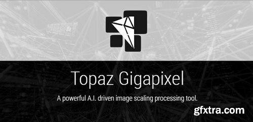 Topaz Plug-ins Bundle for Adobe Photoshop (Updated 08.2018) WIN