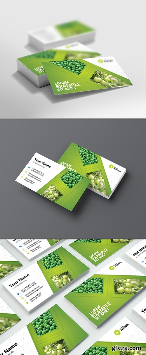 Green Gradient Business Card Layout