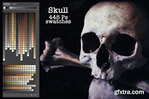 CreativeMarket - Skull Ps Swatches 2902767
