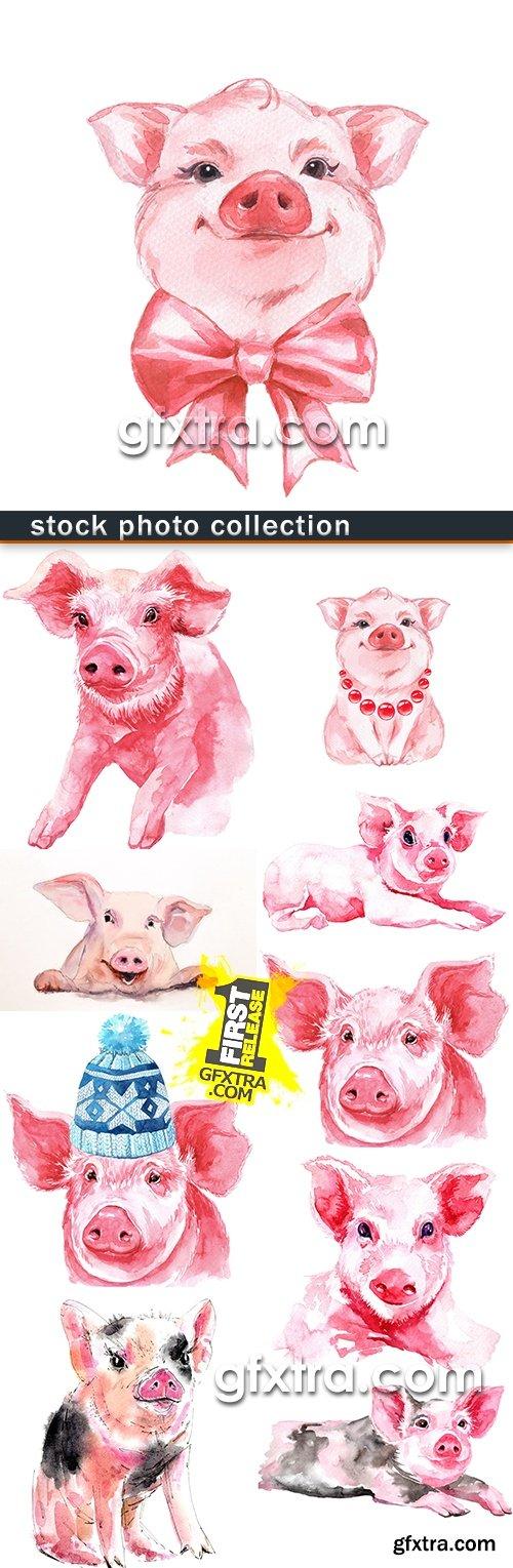 Year of Pig symbol 2019 watercolor illustration