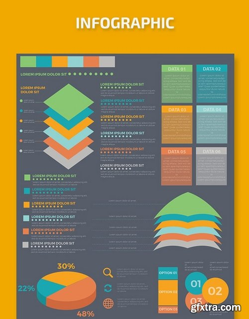 Infographic Template Design 7