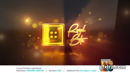 Videohive - Luxury Particles & Reflection Logo Reveal - 22308246