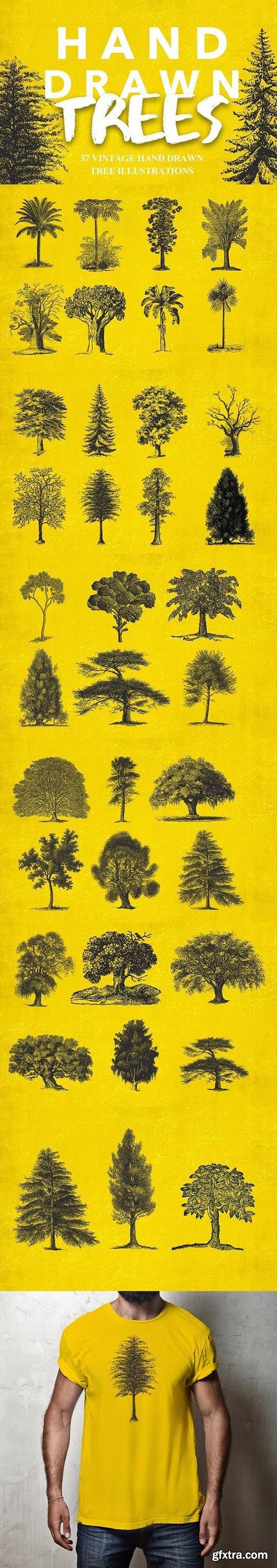 CM - 37 Vintage Tree Illustrations 1482071