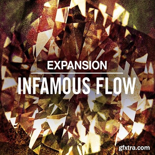 Native Instruments Expansion INFAMOUS FLOW v1.0.0 DVDR-SYNTHiC4TE