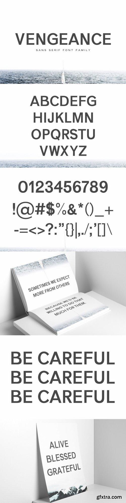 CreativeMarket Vengeance Sans Serif Font Family 1365076
