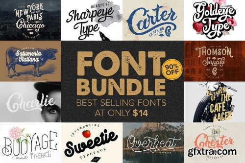 10+ Best-Selling Premium Fonts