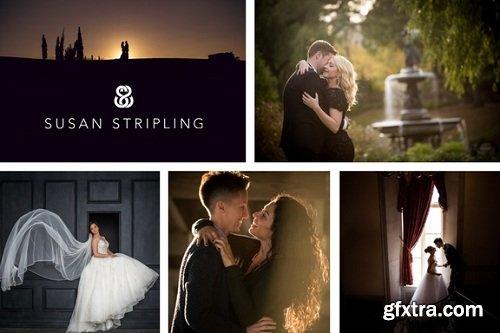 Susan Stripling - Wedding Photography: Evolution of Susan's Style