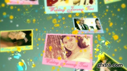 Videohive The Wedding Journey 2093024