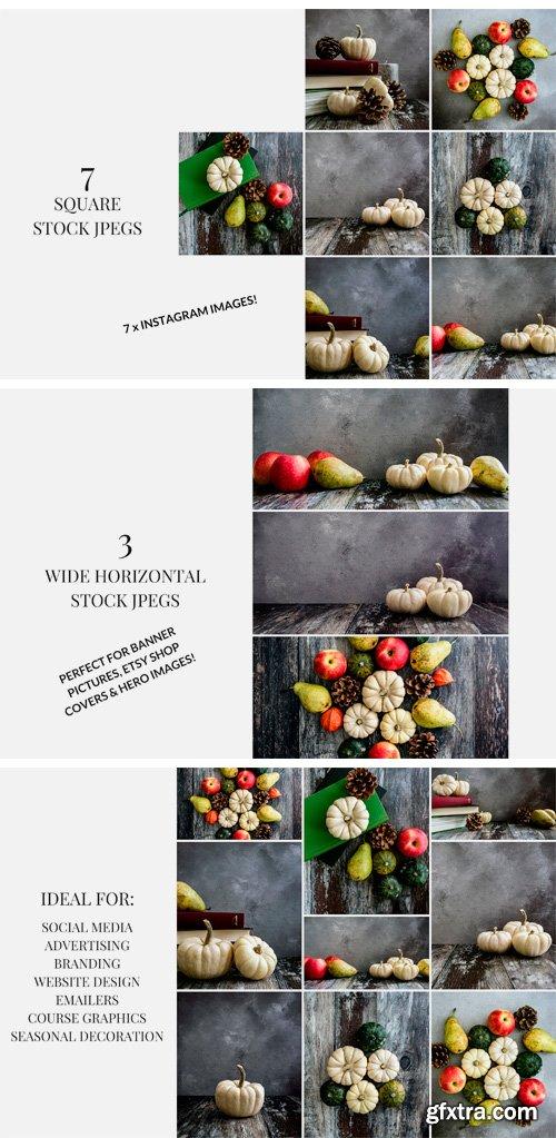 CM - Pumpkins & Pears 3050504