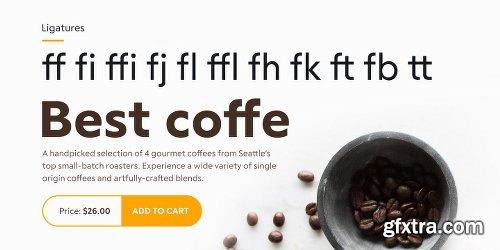 RF Tone Font Family - 16 Fonts