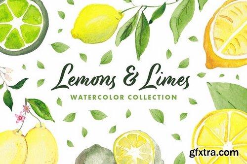 Lemons & Limes Watercolor Collection