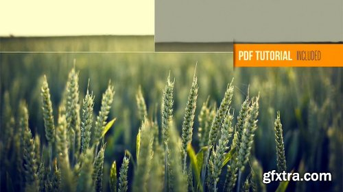 Videohive Clean Photography Promo 6552029