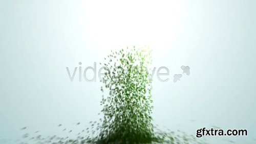 Videohive Creation 4076175