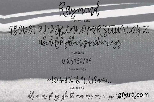 CreativeMarket Raymond | Branding Font 2194217