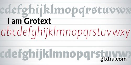 Grotext Font Family - 14 Fonts