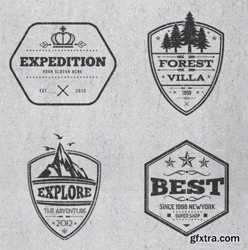 Vintage Logos and Badges Design
