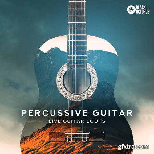 Black Octopus Sound Percussive Guitar WAV-DISCOVER
