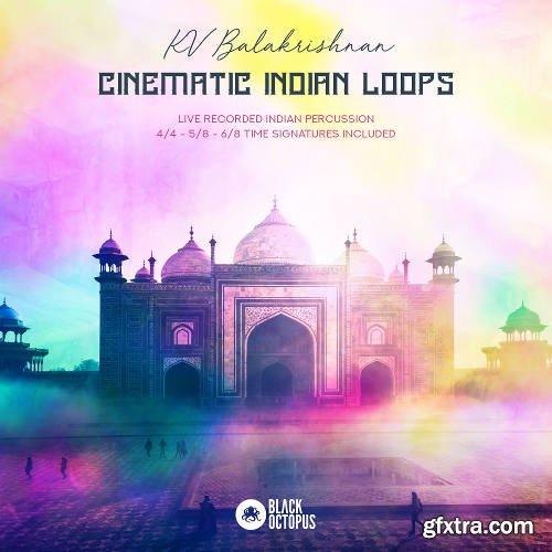 Black Octopus Sound Cinematic Indian Loops WAV-DISCOVER