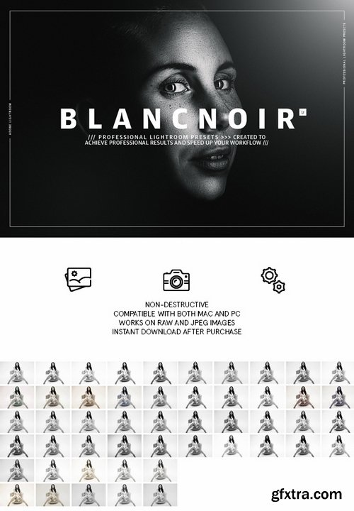 GraphicRiver - Blancnoir Lightroom Presets 22424095