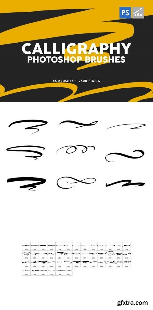 45 Calligraphy Photoshop Stamp Brushes