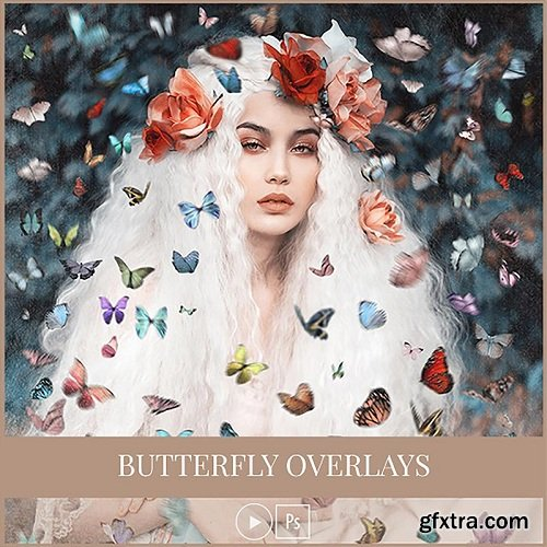 Amanda Diaz - Butterfly Overlays Collection