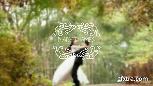 Pond5 - Premium Wedding Titles After Effect Template V20 098845534