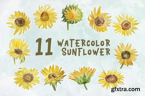 11 Watercolor Sunflower Illustration Graphics