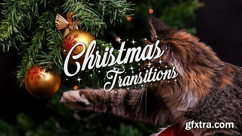 Christmas Transitions Pack - Motion Graphics 143842