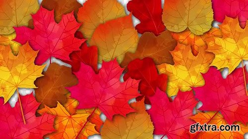 Bright Autumn Leaves Transition Pack - Motion Graphics 138681