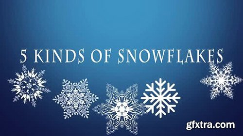 5 Magic Snowflakes Pack - Motion Graphics 138869