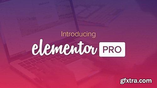 Elementor Pro v2.2.4 / Elementor v2.3.4 - Live Page Builder For WordPress - NULLED + Page Templates