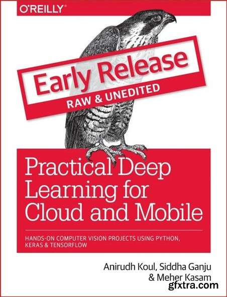 Practical Deep Learning for Cloud and Mobile [Early Release]
