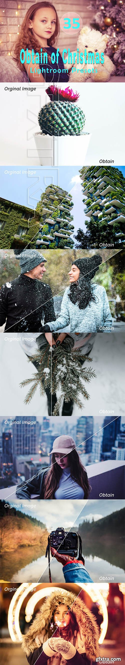 Obtain of Christmas Lightroom Presets