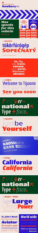 Newbery Sans Font Family - 126 Styles!