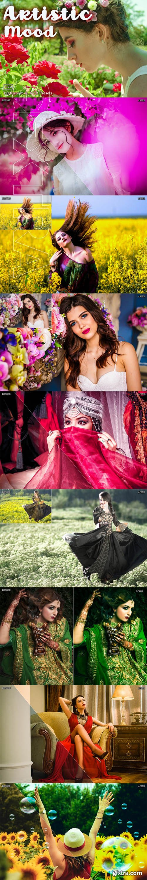 Artistic Lr and ACR Presets