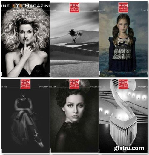 Fine Eye Magazine - 2018 Full Year Issues Collection