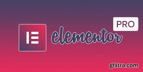 Elementor Pro v2.2.5 / Elementor v2.3.5 - Live Page Builder For WordPress - NULLED + Page Templates