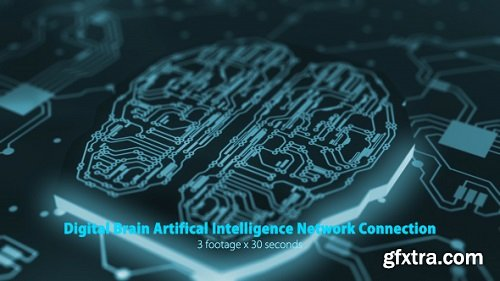 Digital Brain Artificial Intelligence Network Connection Pack