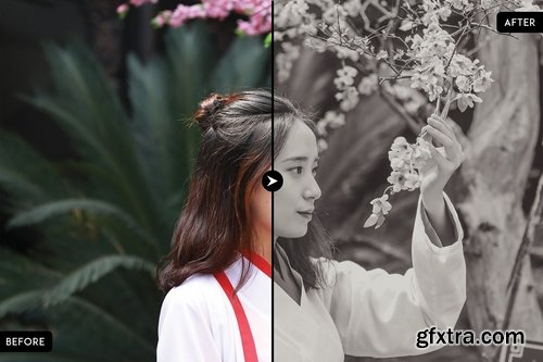 CM - Sepia Collection Lightroom Presets 1742960