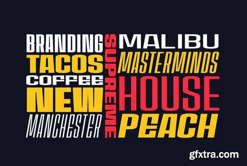 House Sans Font Family