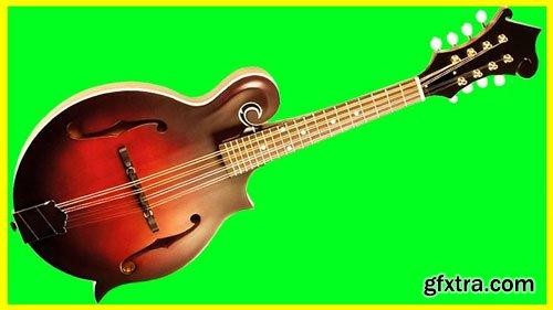 Beginner Mandolin Course MANDOLIN MASTERY FROM THE BEGINNING