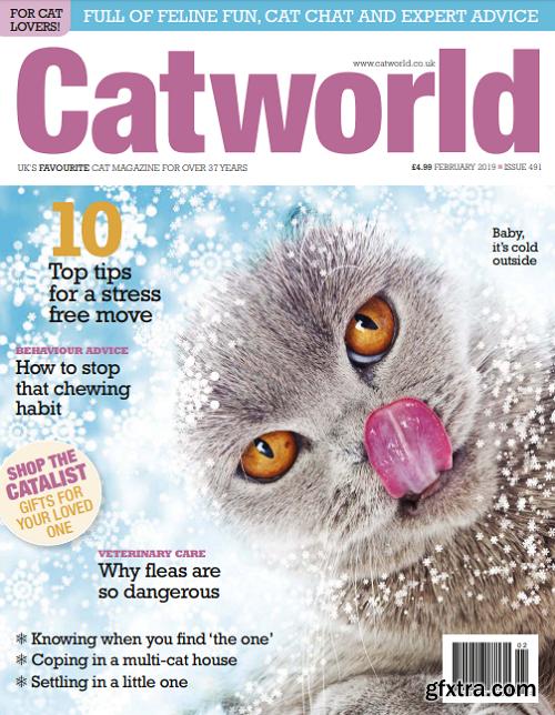 Cat World – February 2019