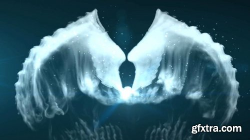 Videohive Wings Logo Reveal 19229048