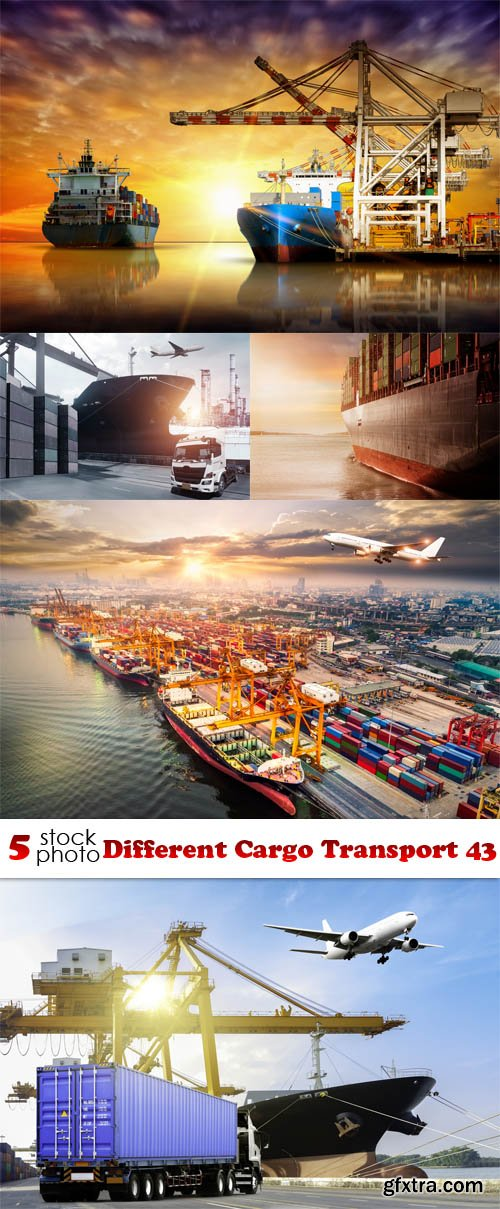 Photos - Different Cargo Transport 43