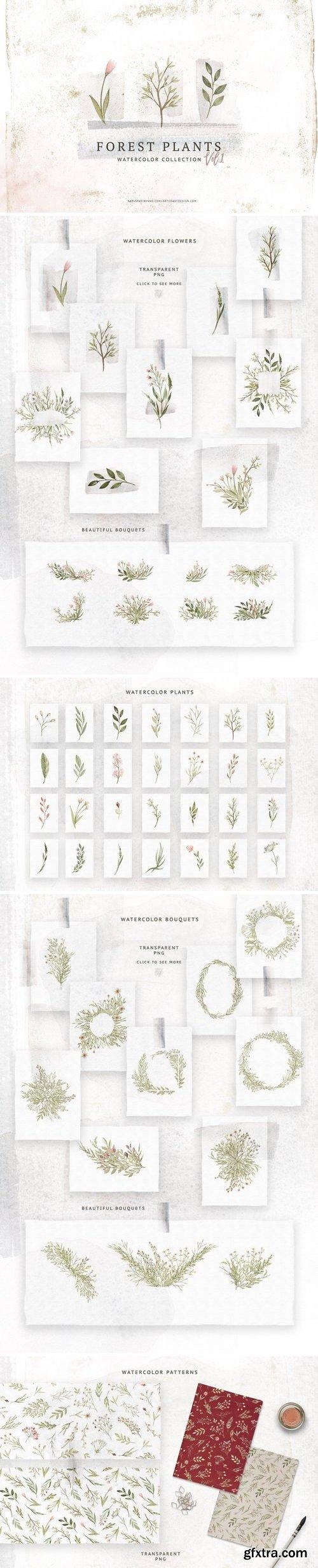 CM - Watercolor Forest Plants 3126972