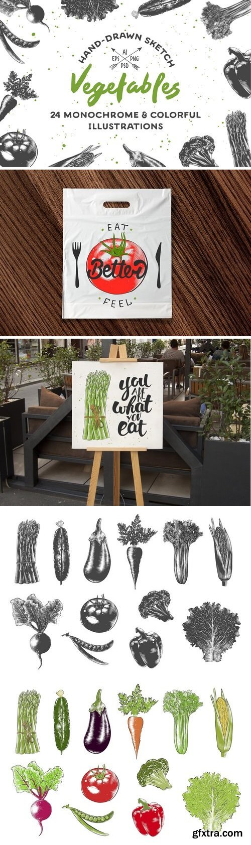 CM - Collection of hand-drawn vegetables 2342132