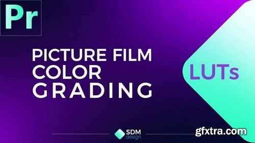 MotionArray Picture Film LUTs Premiere Pro Presets 164246
