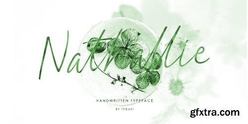 Nathallie Font